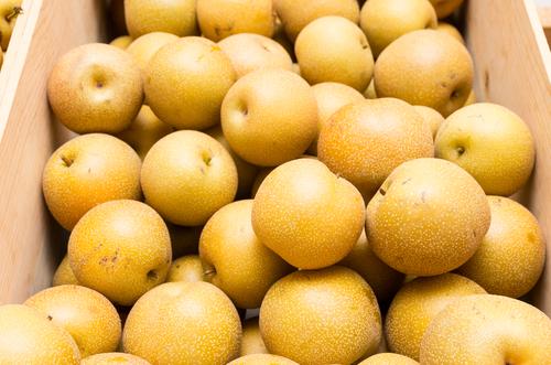 梨 冷蔵庫 保存