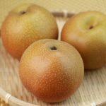 千葉県の梨は日本一!その中でも八千代の梨が人気の理由とは?