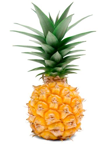 パイナップル 口 の 中 痛い