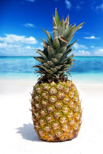 パイナップル 酵素 冷凍 加熱 栄養