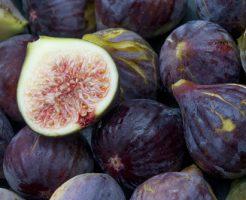 ドライフルーツ いちじく 保存 乾燥