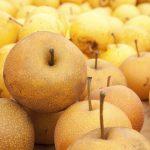 鮮度が落ちていない、新鮮な美味しい食べ頃の梨の見分け方について