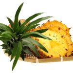パイナップルの本来の名前と花言葉の意味