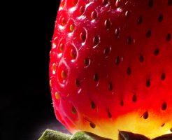 イチゴ アザミウマ 種類 天敵