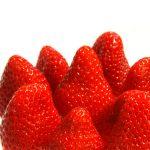 イチゴの天敵はダニなの?どんな種類がいるの?