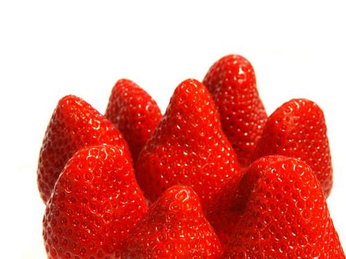 イチゴ ダニ 種類 天敵