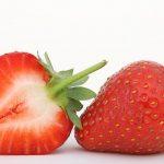 発芽したいちごは食べれるのか?いちごの実の構造と発芽について