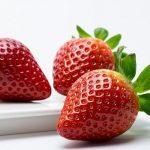 イチゴの受粉を確実に行う方法について