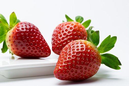 イチゴ ハウス栽培 管理