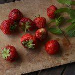 イチゴの花芽分化と窒素の関係とは?肥料の調節について