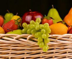 イチゴ 水耕栽培 費用