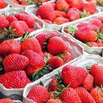 イチゴ栽培の方法と適切なプランターのサイズについて