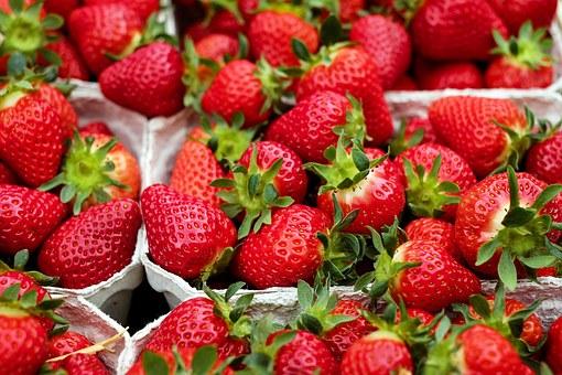イチゴ 株分け 方法