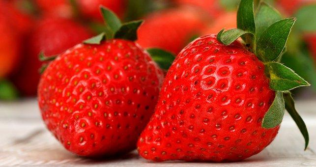 イチゴ 花芽分化 温度