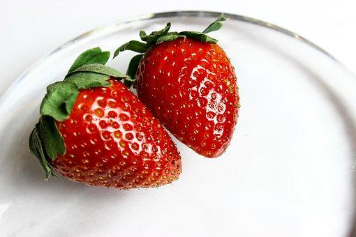 イチゴ 初心者 おすすめ