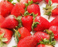 イチゴ うどんこ病 原因