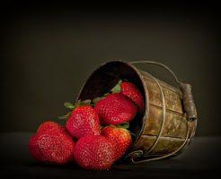 イチゴ 葉 丸まる