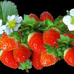 歯が痛いのはイチゴのせい?歯痛の原因と対処法
