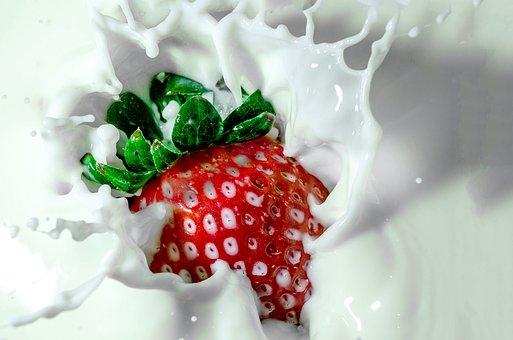 イチゴ 美味しく 育てる