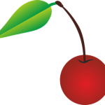 山形でのさくらんぼの品種と時期とその値段について