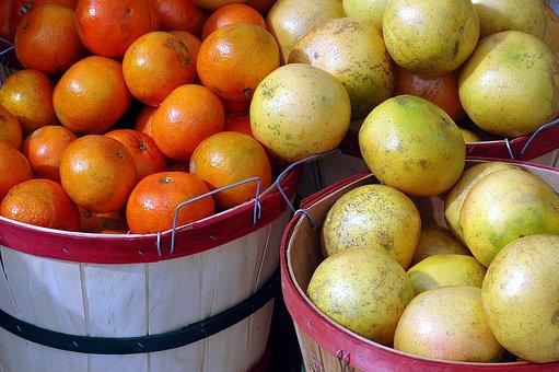 グレープフルーツ 国産 値段