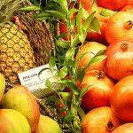 グレープフルーツがもたらす効果や効能にはどのようなものがあるの?