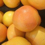 グレープフルーツを種から育てる育て方とは?