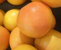 グレープフルーツ 育て方 種から