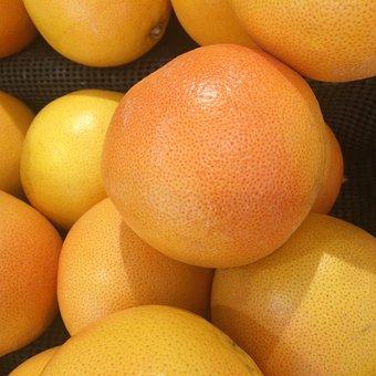 グレープフルーツ育て方種から
