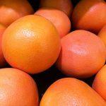 グレープフルーツの木の実について