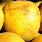 グレープフルーツは朝よりも夜に食べると効果的?