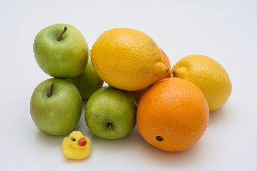 グレープフルーツ 栽培 適地