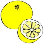 グレープフルーツの酵素シロップの作り方について