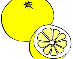 グレープフルーツ 酵素シロップ 作り方