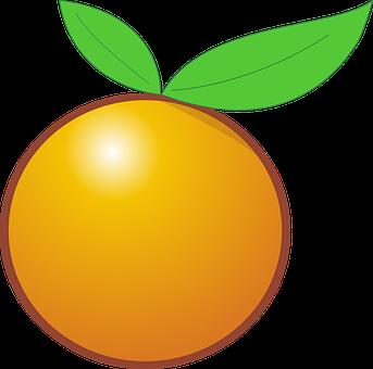 グレープフルーツ 妊婦 つわり