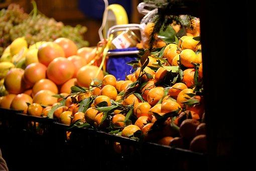 グレープフルーツ 木 育て方