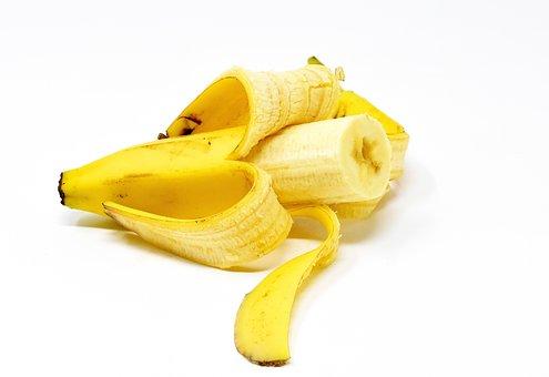 日本 バナナ栽培 難しい