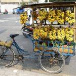 フィリピンだけじゃない?タイのバナナの種類は