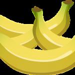 バナナってどこで生産されている?なぜ熱帯が多いのか?