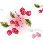 さくらんぼ栽培の難易度について