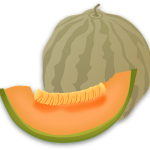 メロンの栄養は果肉の色によって成分が違う?