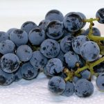 ブドウの晩腐病はどうやって対策する?症状はどんなもの?