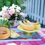 メロンの苗とおススメのメロンの種類について