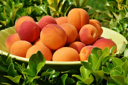 桃 栄養 効果 効能