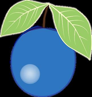 ブルーベリー 相性 品種