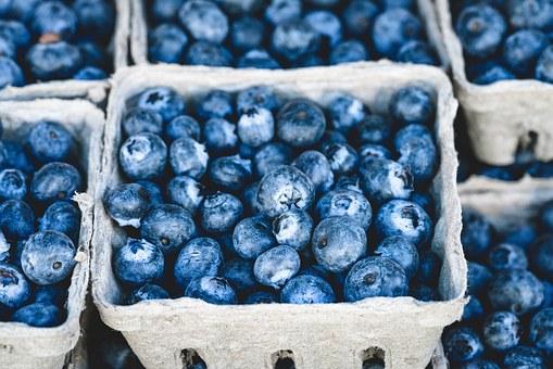 ブルーベリー 土壌 酸性 維持 ピートモス