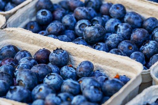 ブルーベリー 冷凍保存 賞味期限 方法