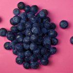 ブルーベリーの品種「ブルーレイ」の特徴! ~相性のいい土地などはあるの?~
