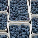 ドライフルーツのブルーベリーの効能と栄養価は?値段は高いの?
