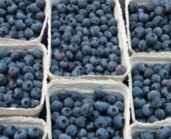 ドライフルーツ ブルーベリー 効能 栄養価